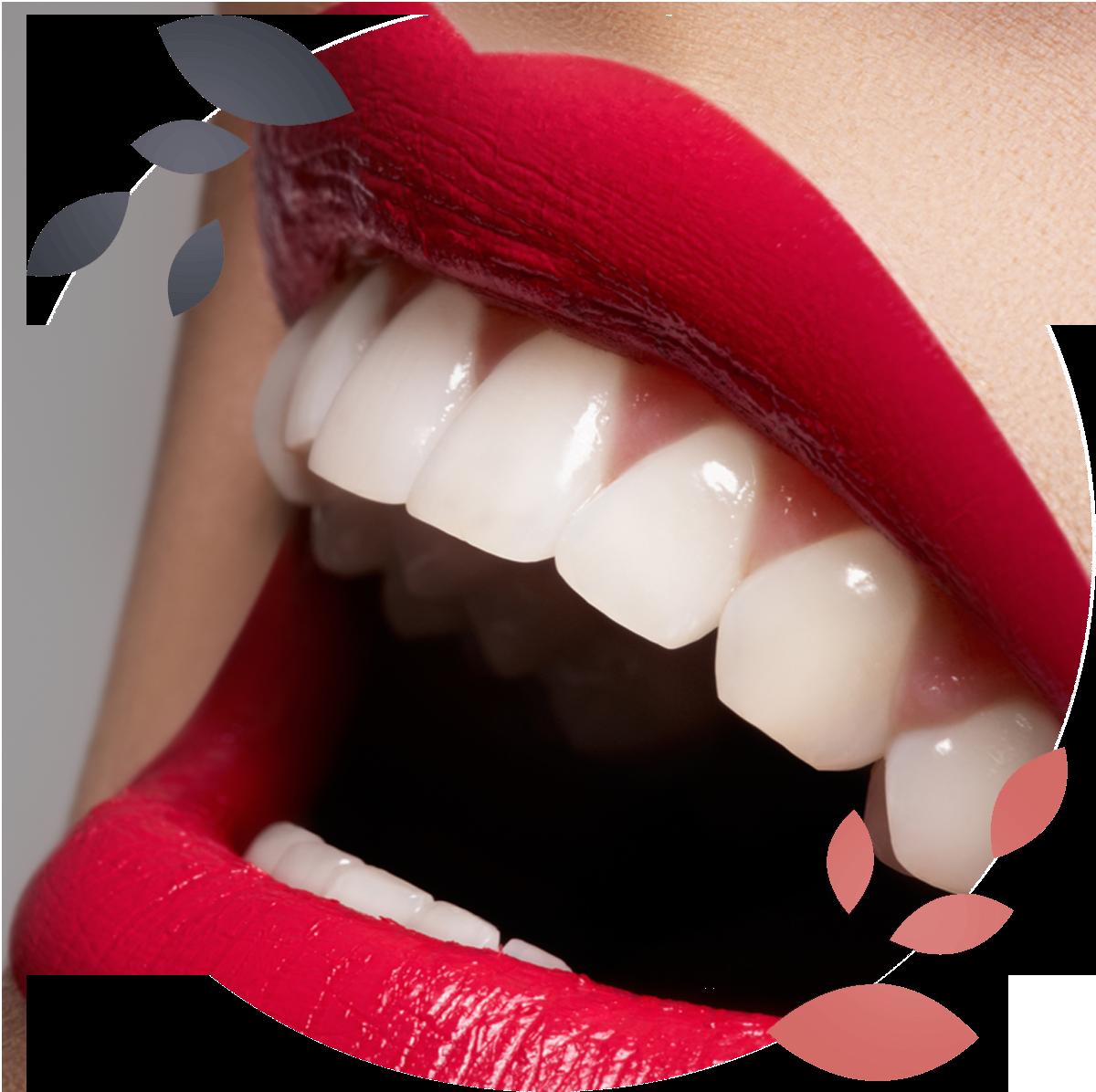 https://lotus-detente.com/wp-content/uploads/2020/08/dentaire-circle-3.png